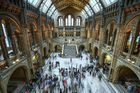The Natural History Museum Will Stop Selling Plastic Bottles In A Bid To Lessen Plastic Waste